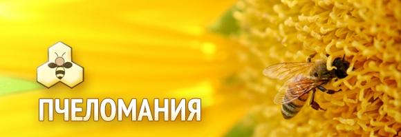 izlozhenie_Pchelomaniya_Dobrich_Dobrichki_panair