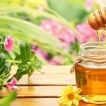 Какво се случва със суровия пчелен мед докато достигне до магазините?
