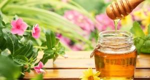 Какво се случва с пчелния мед докато достигне до магазините?