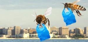 Градските пчели използват пластмаса при изграждането на кошерите