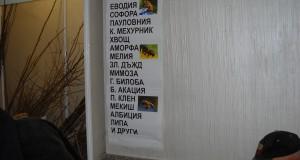 Медоносни видове